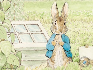 Oh my god Peter Rabbit, I am sorry to say, but you might be the most overrated thing ever.